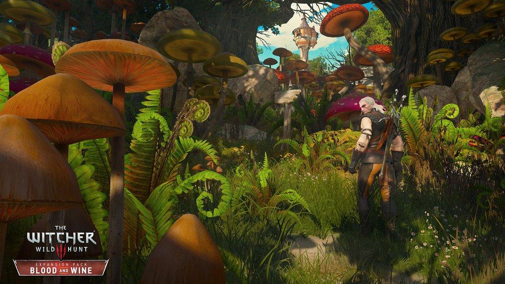 Geralt in the Mushroom Kingdom?