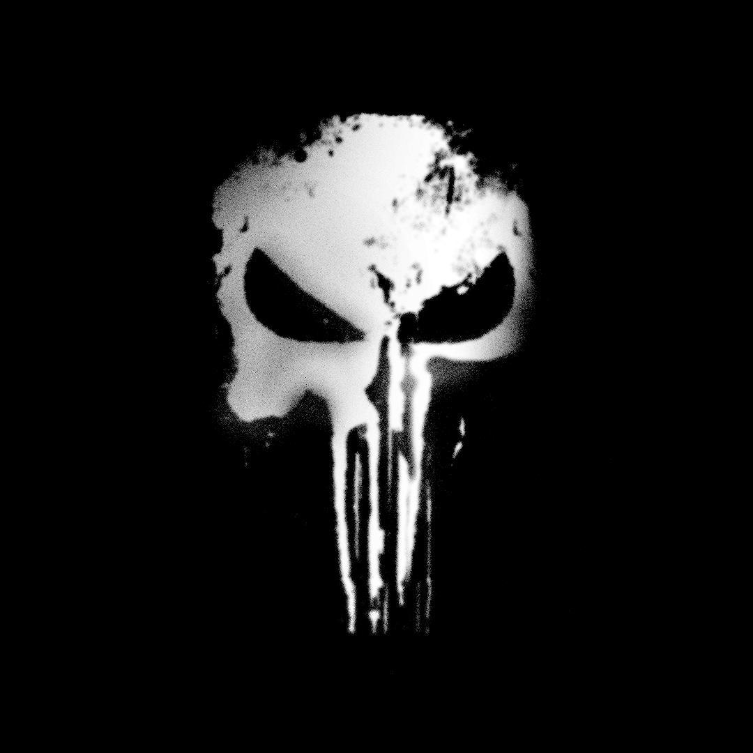 Punisher spin-off series teaser image