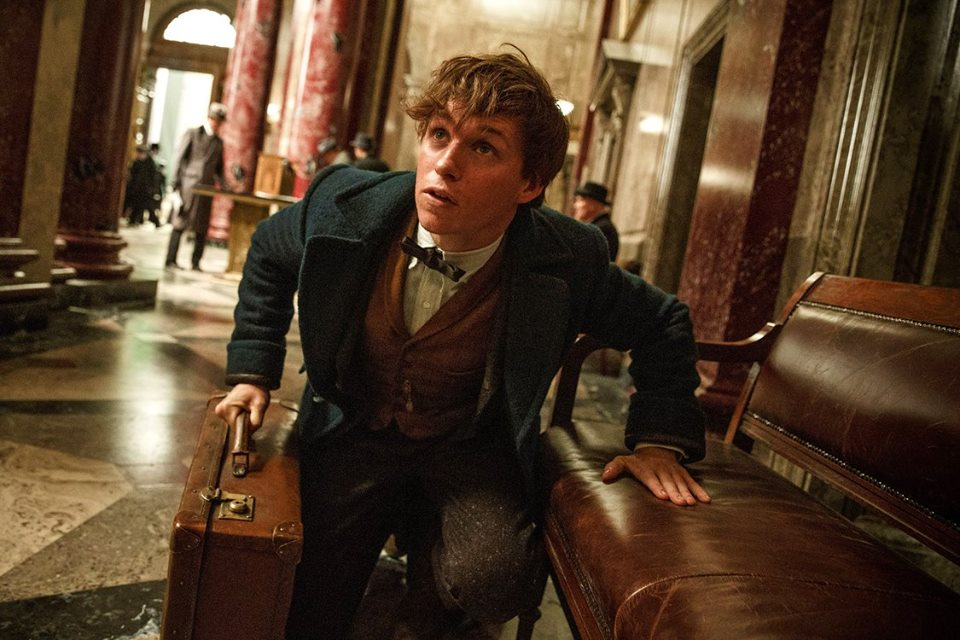'Fantastic Beasts' Trailer Returns to the Wizarding World