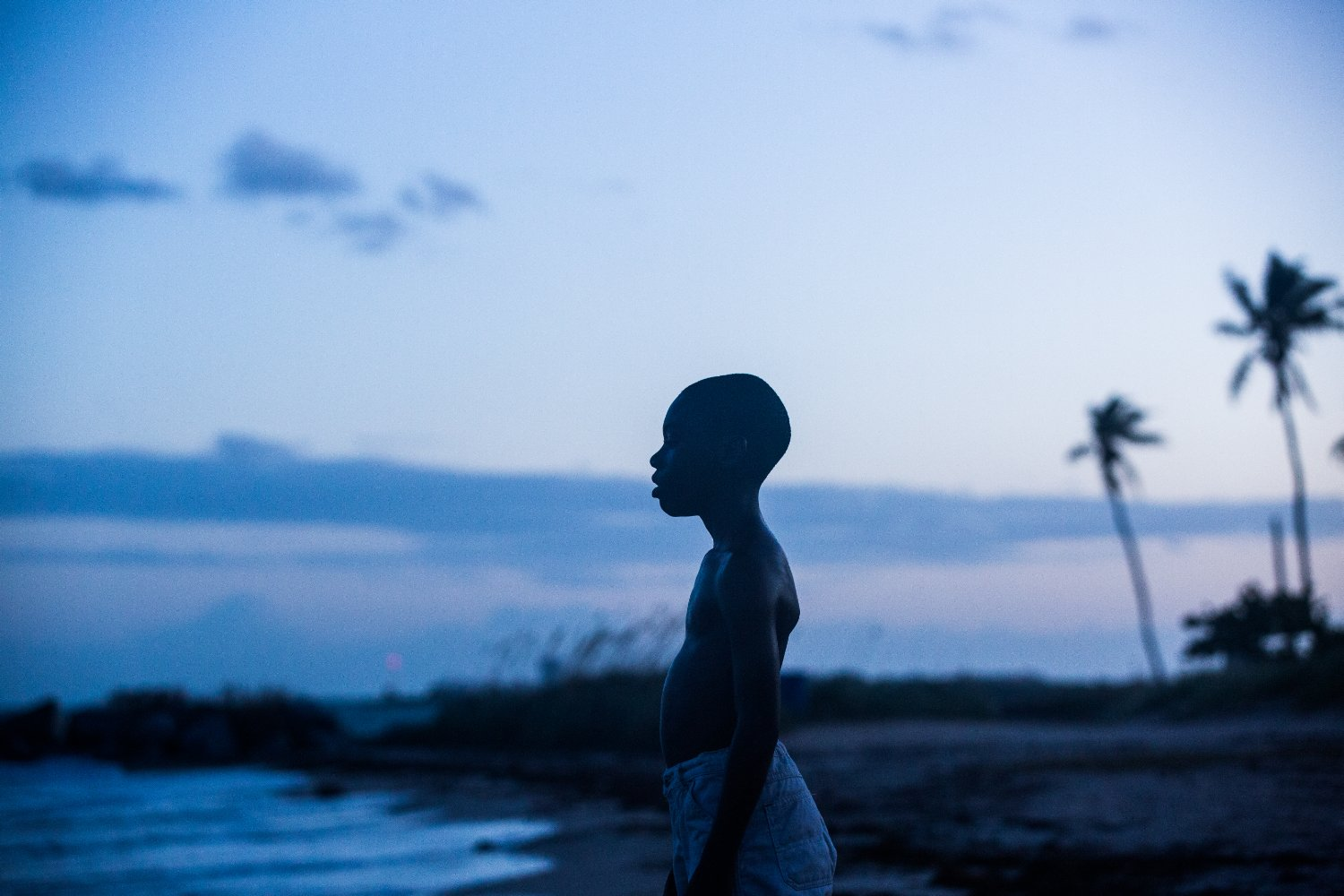 'Moonlight' is an Enchanting Look at the Struggle for a Life Less Ordinary