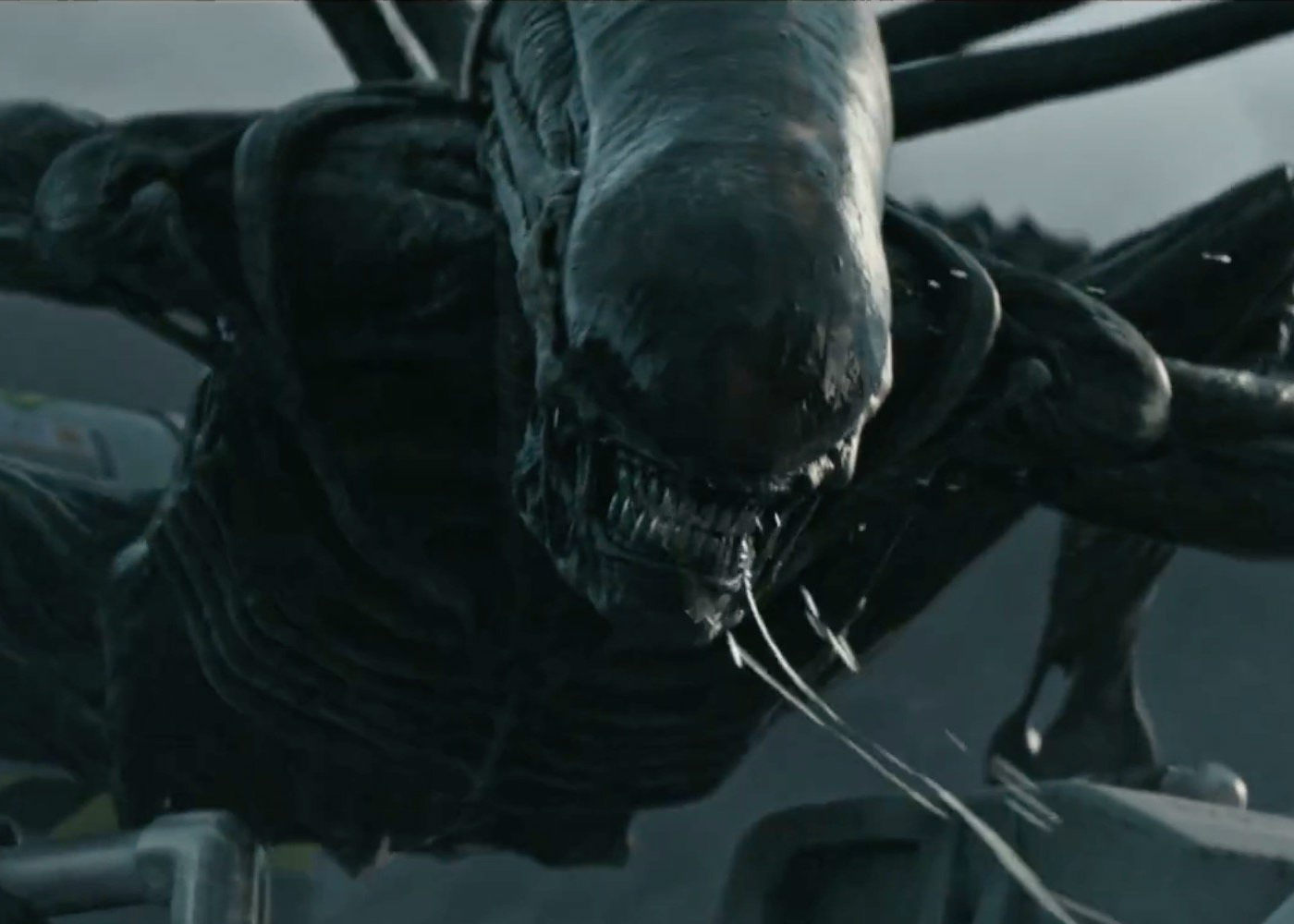 Alien: Covenant Slithers Past Guardians of the Galaxy Sequel for Number One Spot