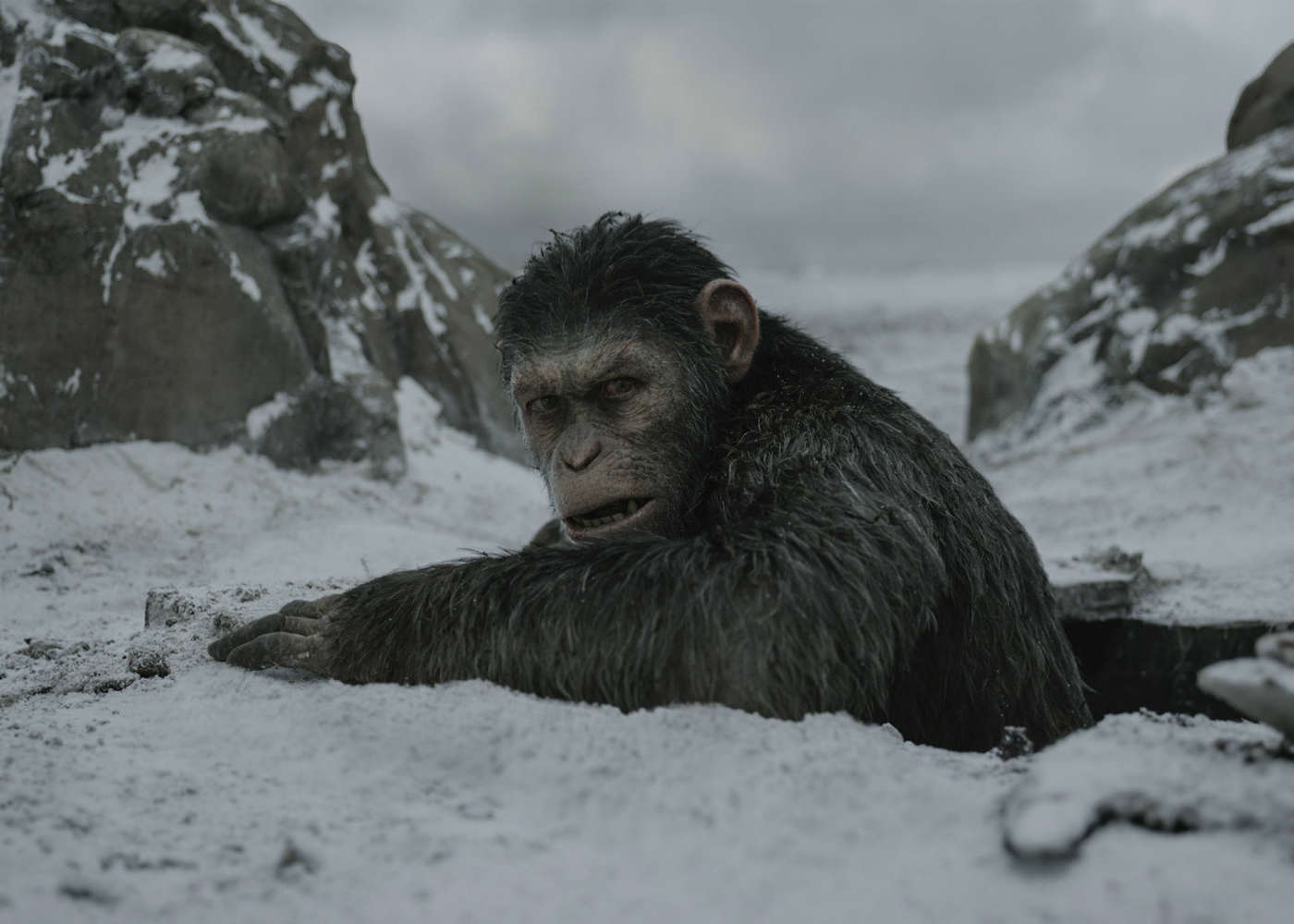 War for the Planet of the Apes Devours $100 Million