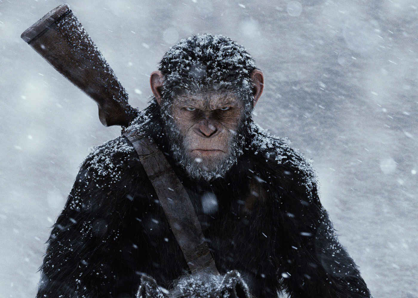 War for the Planet of the Apes Certified FRESH
