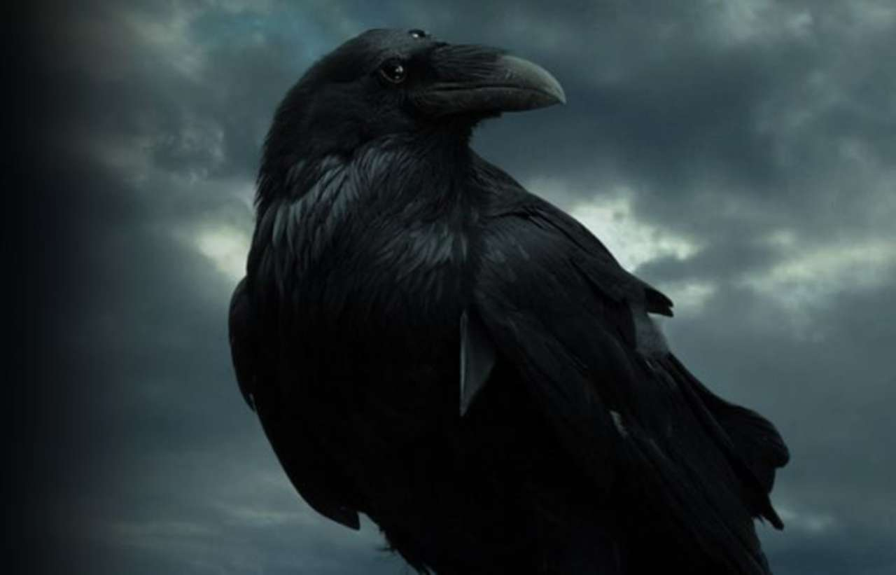 Game Of Thrones Star Is A Fan Of The Three-Eyed Raven Theory