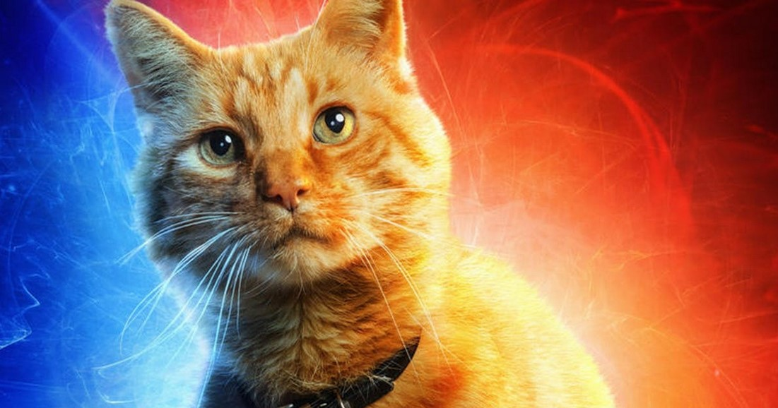 Captain Marvel Directors On What They'd Want For A Goose Spinoff