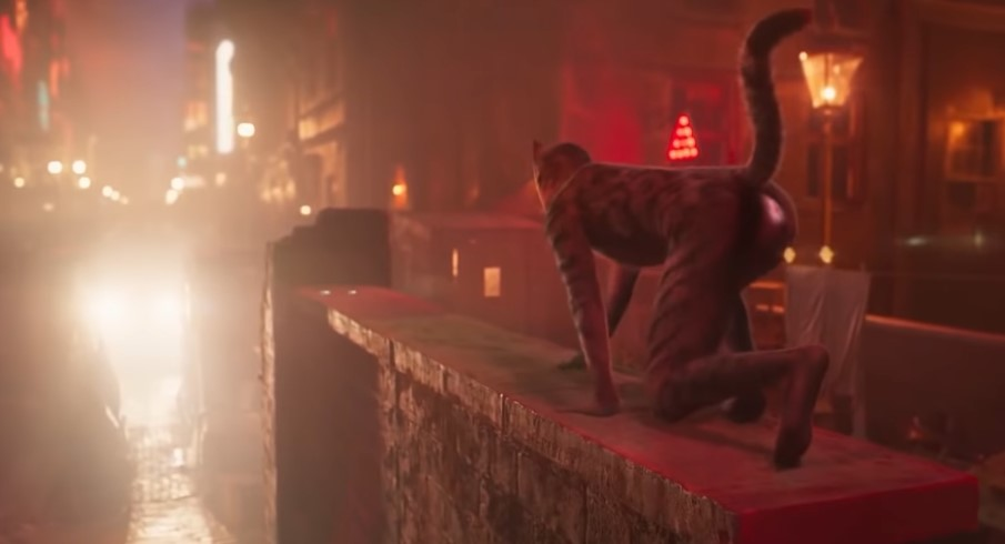 Cats The Movie Gets A 'Butthole Cut'  Trailer