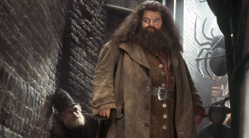 Hagrid Actor Robbie Coltrane Doesn't Get the Whole J.K. Rowling Controversy